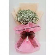 Baby Breath Pink